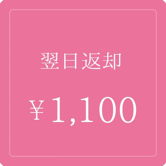 翌日返却1000円